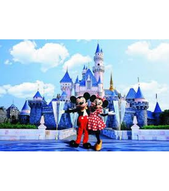 Disneyland Ticket (Children)